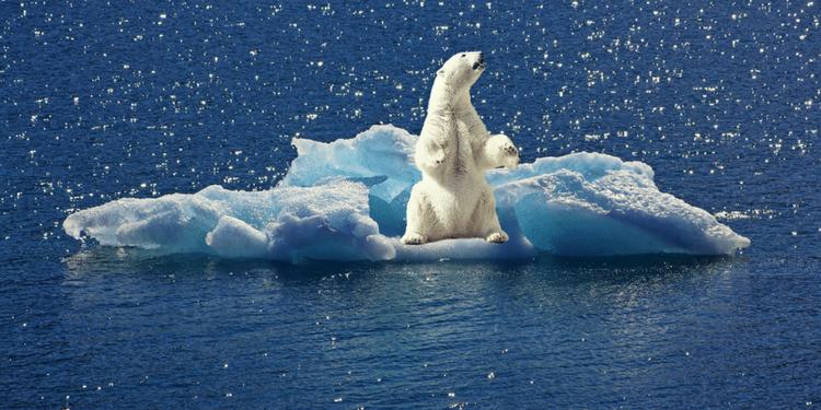 Oral DELF B2 - Réchauffement climatique